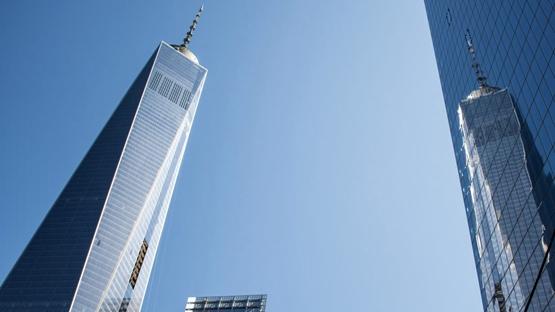 纽约推出建筑法案保护鸟类